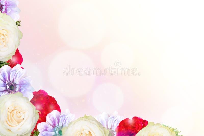 Sch?ner Fr?hlingsnaturhintergrund mit Bl?te, dem Blumenblatt und bokeh auf rosa Hintergrund Feld von der Blume stockfoto