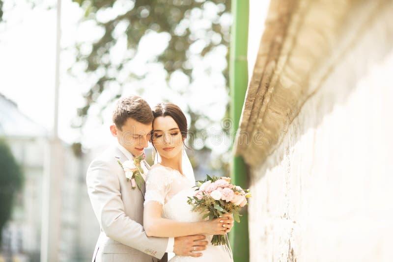 Sch?ner Hochzeitspaarehemann im Anzug und in der Frau im Hochzeitskleid, das nahe der Backsteinmauer aufwirft lizenzfreies stockbild
