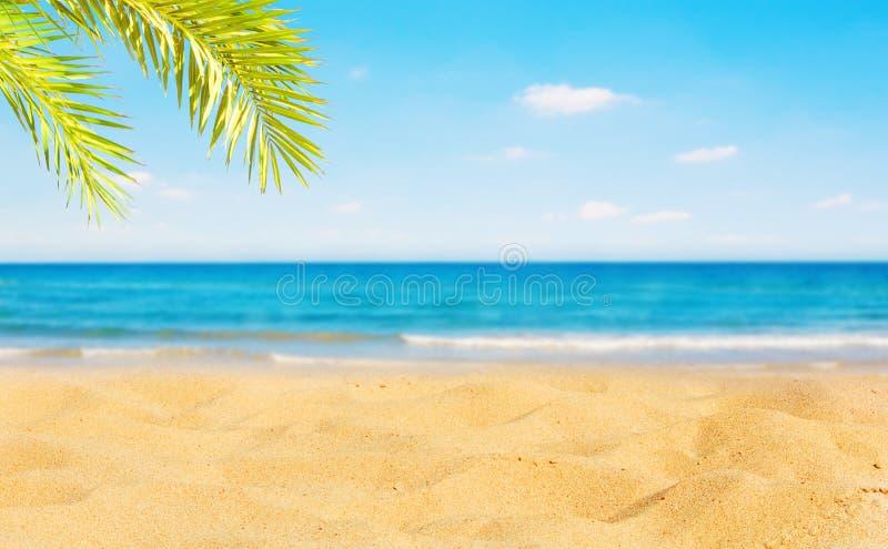 Sch?ner Natur-Sommer-Strand-Hintergrund, selektiver Fokus lizenzfreie stockfotos