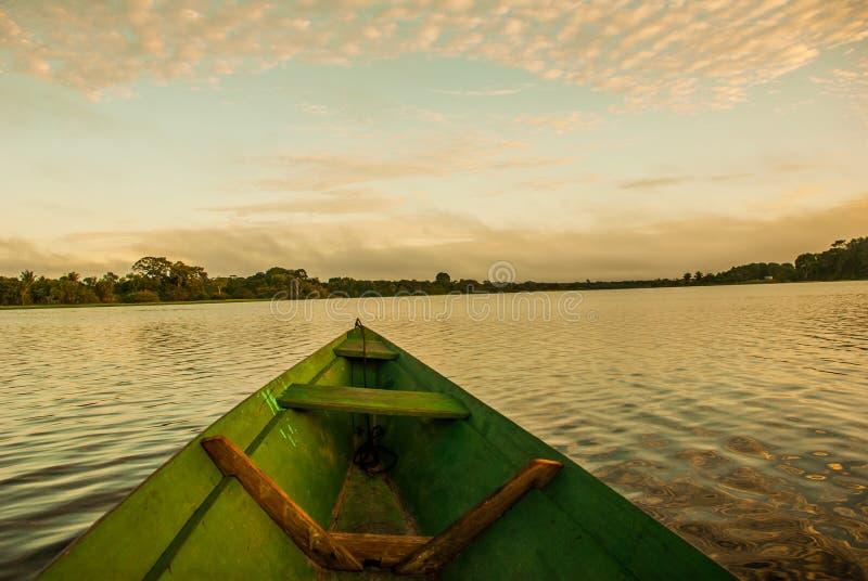 Sch?ner Sonnenaufgang auf dem Fluss Ansicht vom Boot beim Amazonas, mit einem dichten Wald auf dem Ufer und dem blauen Himmel, An stockbild