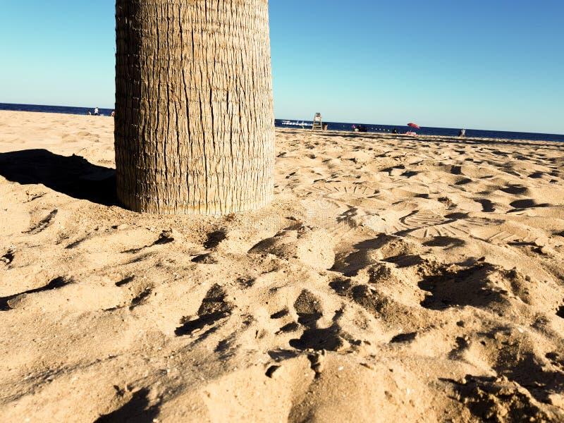 Sch?ner Strand in Benidorm, Spanien Ansicht des Strandes mit nahem Bild von Palmen und des Meeres mit Regenschirmen und Urlauber stockfotografie