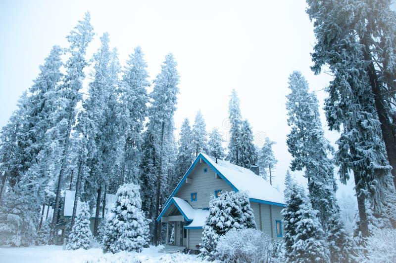 Sch?ner Winterwald und schneebedecktes Haus Tannen und Kiefern im Schnee lizenzfreie stockfotografie