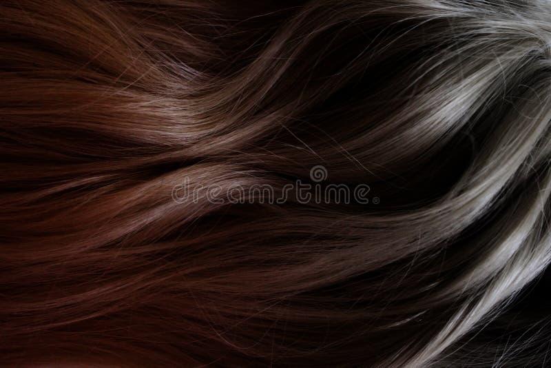 Sch?nes Haar Langes gelocktes dunkles Haar Färbung mit Steigung vom Rot zu schwärzen stockbild