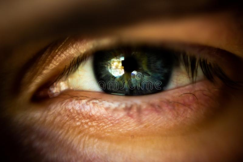 Sch?nes menschliches Auge stockfotografie