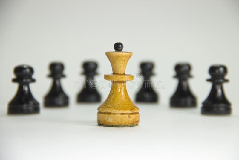 Schaak leider royalty-vrije stock afbeelding