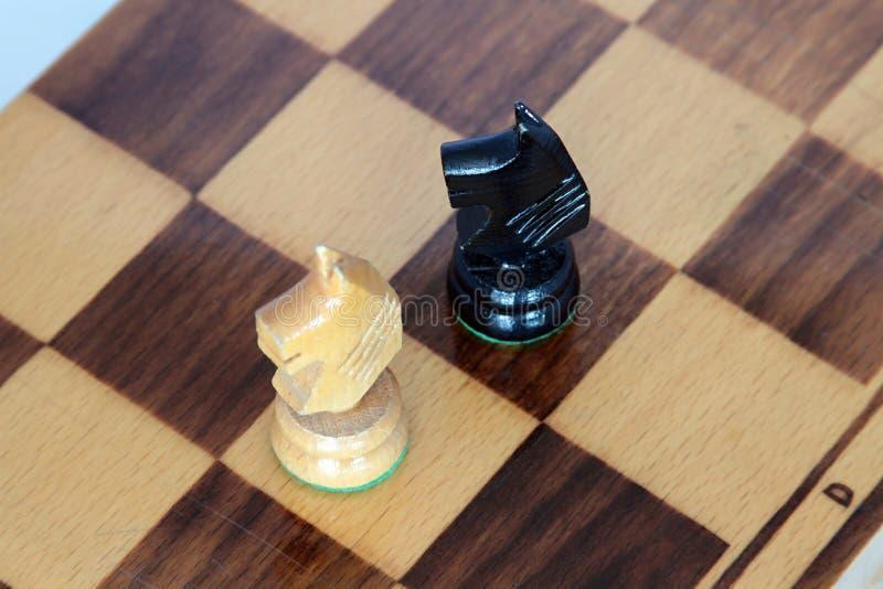 schaakpaarden royalty-vrije stock foto