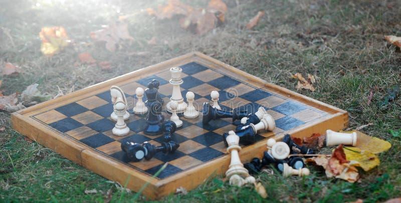 Schaakraad en cijfers aangaande een de herfstgras royalty-vrije stock fotografie