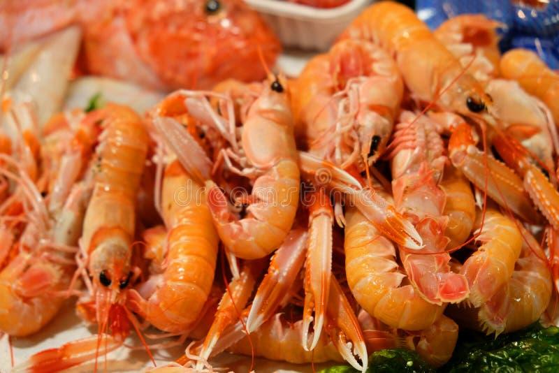 Schaaldieren garnaal- op ijs bij de vissenmarkt - vers overzees voedsel stock afbeelding