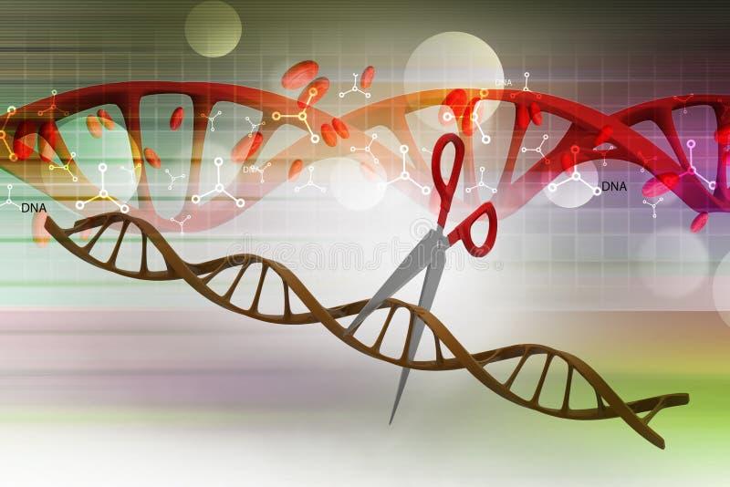 Schaar die DNA-structuur snijden royalty-vrije illustratie