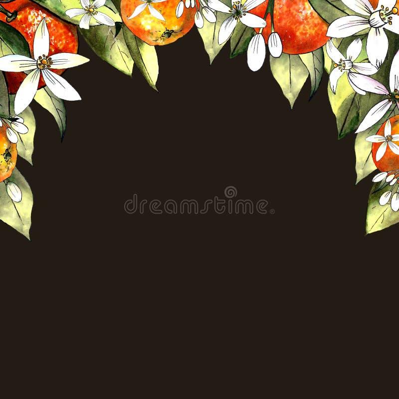Schablone des Handabgehobenen betrages der Mandarine, der Blätter und der Blumen auf braunem Hintergrund Zeichnungsmarkierungen lizenzfreie stockfotos