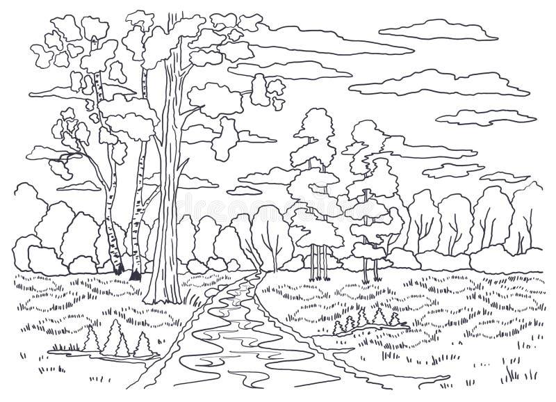 Schablone für die Färbung Landschaftsmalerei Wald, Bäume, Birke, Kiefer, Sträuche stock abbildung