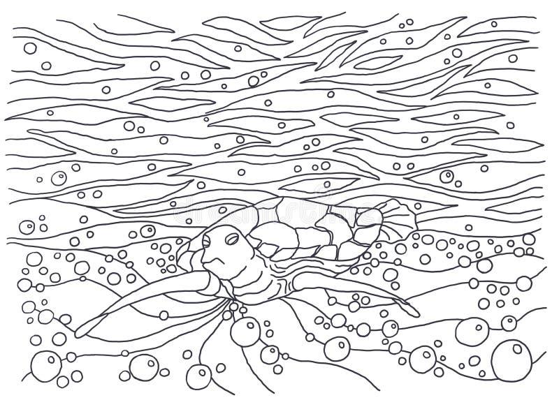 Schablone für die Färbung Schildkröte stock abbildung