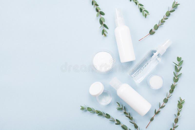 Schablone von der natürlichen Kosmetik für Hautpflege- und Schönheitsbehandlung mit Draufsicht des grünen Eukalyptusblattes flach stockfotos