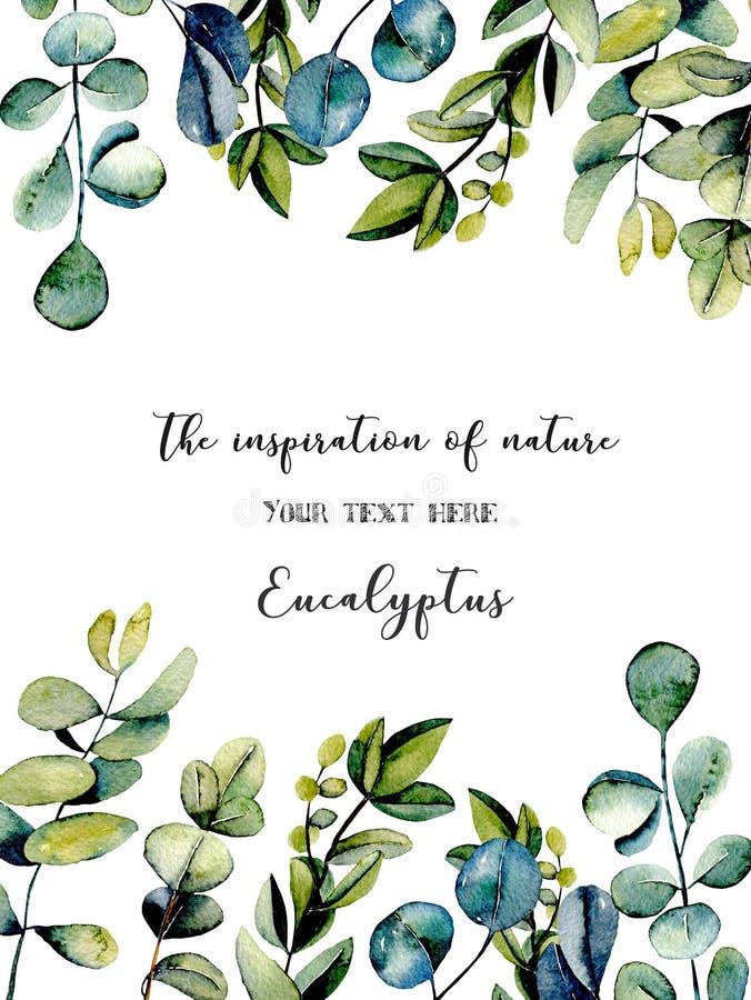 Schablonenpostkarte mit Eukalyptus verzweigt sich Aquarellillustration lizenzfreie abbildung