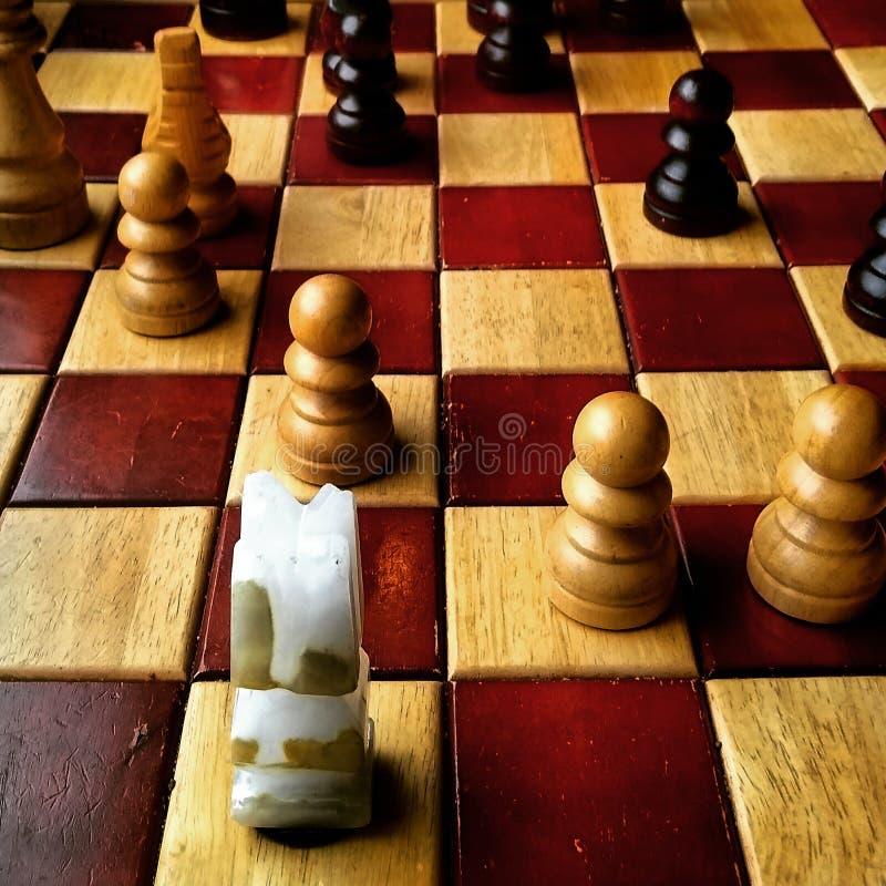 Schach stockbilder