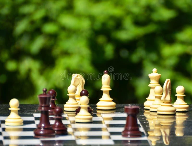 Schachfiguren auf einer Tabelle im Park stockfotografie