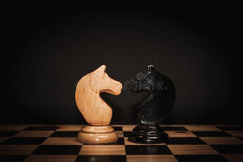 Schachpferd stockfotografie