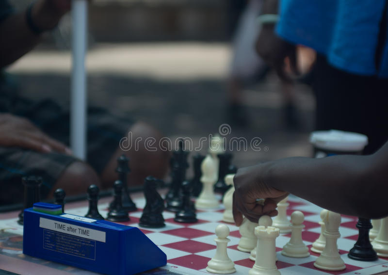 Schack som spelar i parkera fotografering för bildbyråer