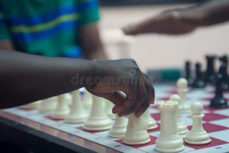 Schack som spelar i parkera royaltyfria foton