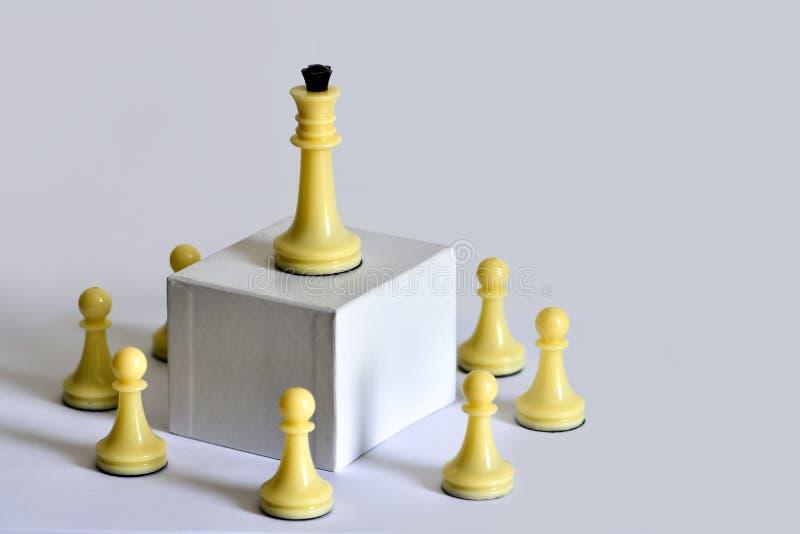 Schackbegrepp, lagbyggnad, ledarskap och delegation av myndighet, workflow arkivfoto