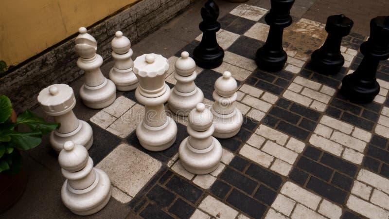Schackbräde med enorma diagram, konung, råka royaltyfria bilder