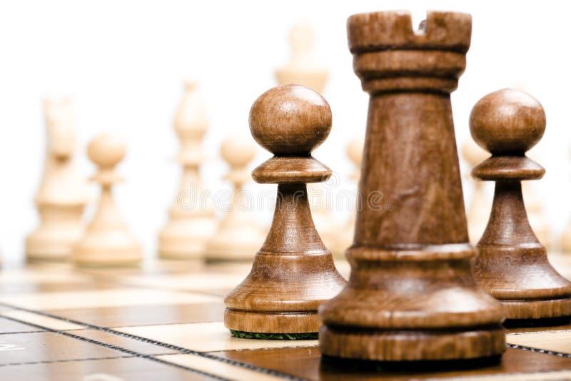schackfokusen pantsätter royaltyfria bilder