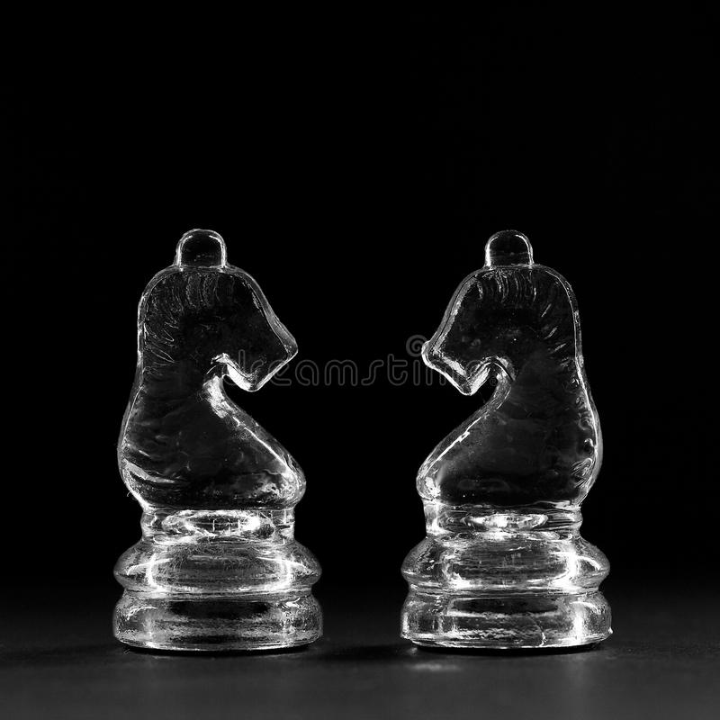 schackhästar två arkivfoton