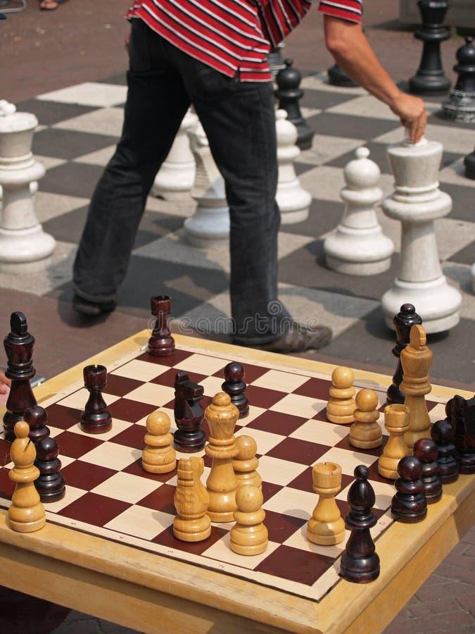 schackjätte royaltyfria foton