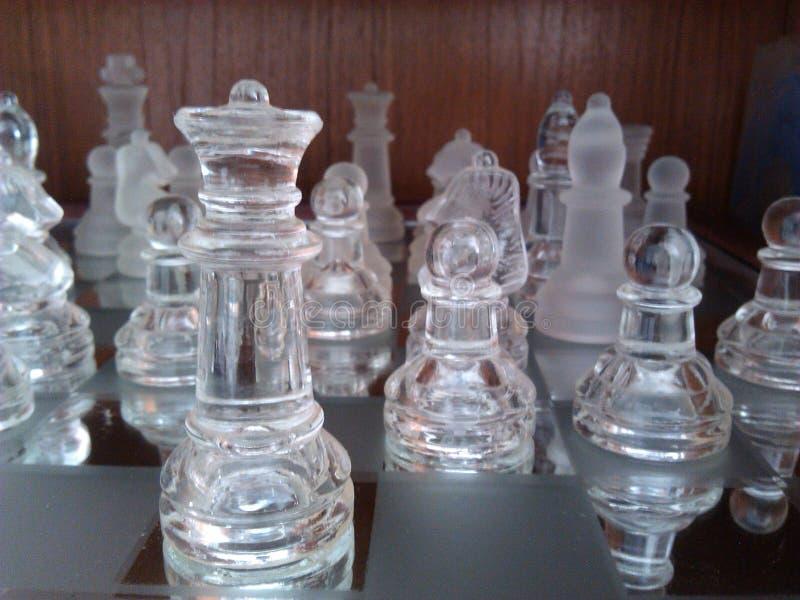 Schackkamp royaltyfri foto