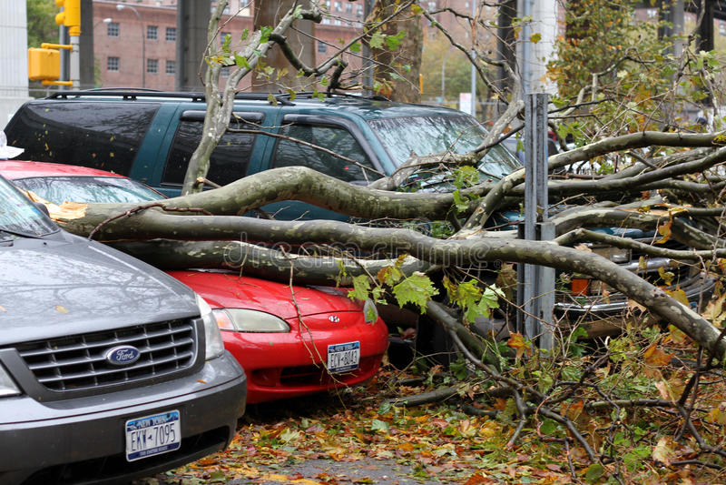 Schade NYC - Zandige Orkaan stock afbeelding