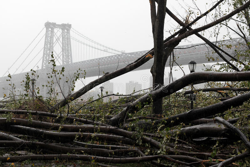 Schade NYC - Zandige Orkaan stock foto's
