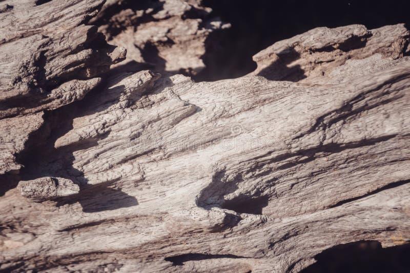 Schaduw van de Grunge de bruine houten textuur en lichte foto abstracte achtergrond stock fotografie