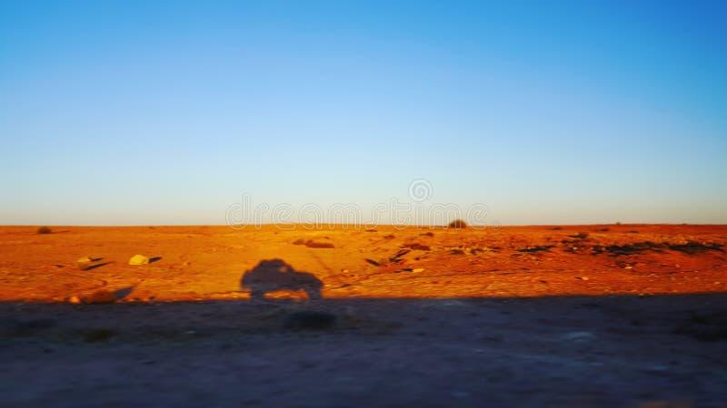 Schaduw van snelle auto in een woestijn stock afbeelding