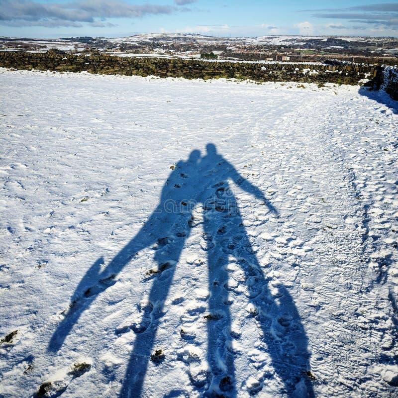 Schaduwen in de sneeuwwinter stock foto