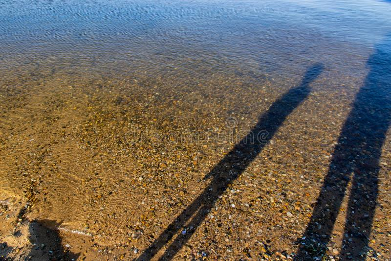 Schaduwen in de wateren van de baai in Chappaquiddick stock afbeelding