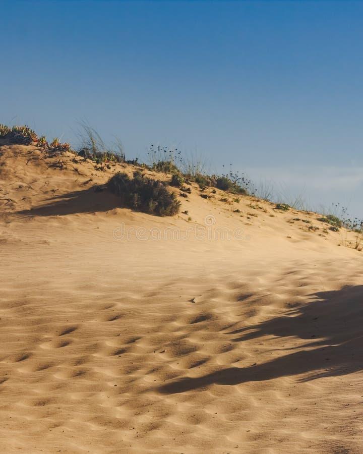 Schaduwen op het zand van de duinen stock fotografie