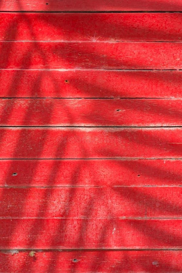 Schaduwen van bladeren op rode lat stock afbeeldingen