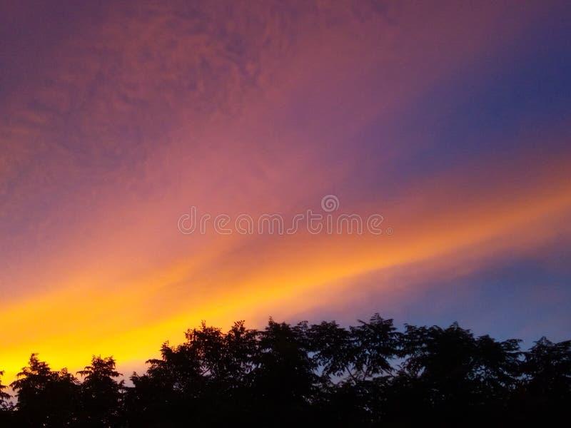 Schaduwen van de zon royalty-vrije stock foto