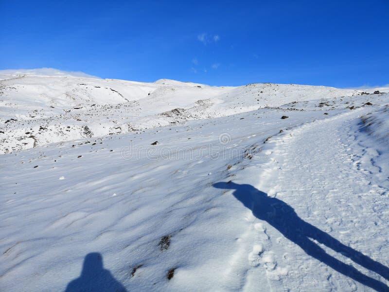 Schaduwen van sneeuw de passieve mensen naast een weg stock afbeelding