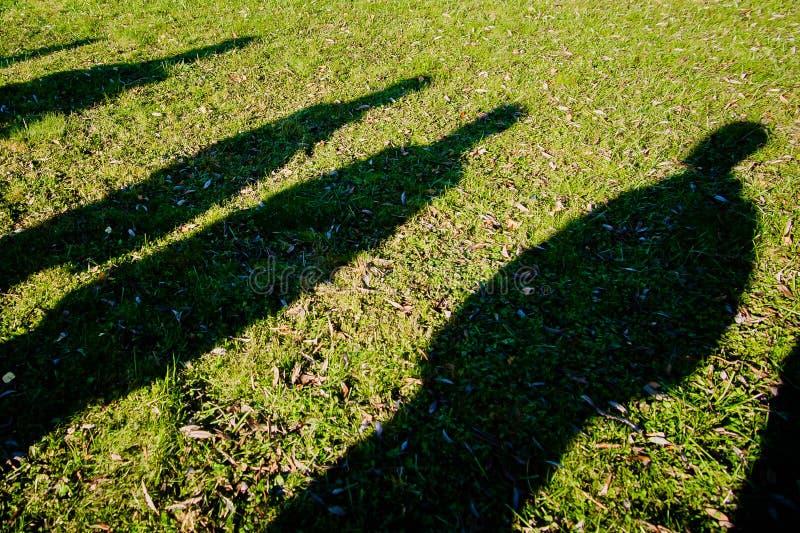 Schaduwen van verscheidene mensen op het groene gras stock afbeelding