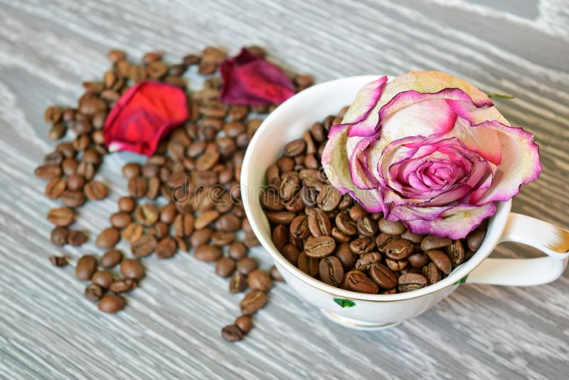 Schale auf Tabelle mit Kaffeebohnen und trocknen Rosafarbenes stockbild