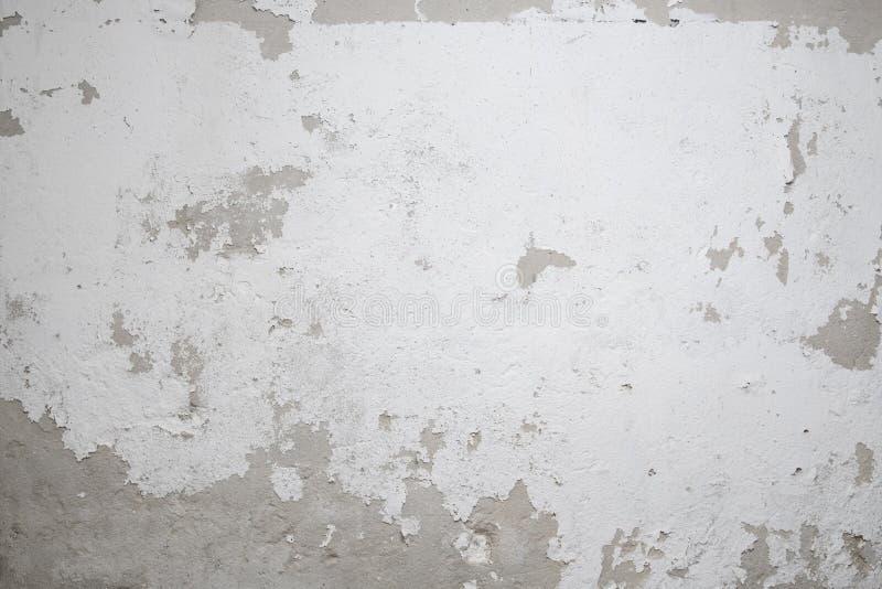 schale der wei en farbe auf alter wand stockbild bild von lack dekor 89738305. Black Bedroom Furniture Sets. Home Design Ideas