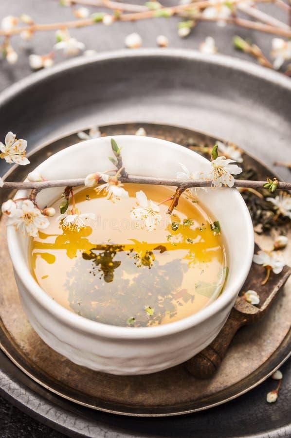 Schale des grünen Tees mit Kirschblüte-Niederlassung, Abschluss oben lizenzfreie stockbilder