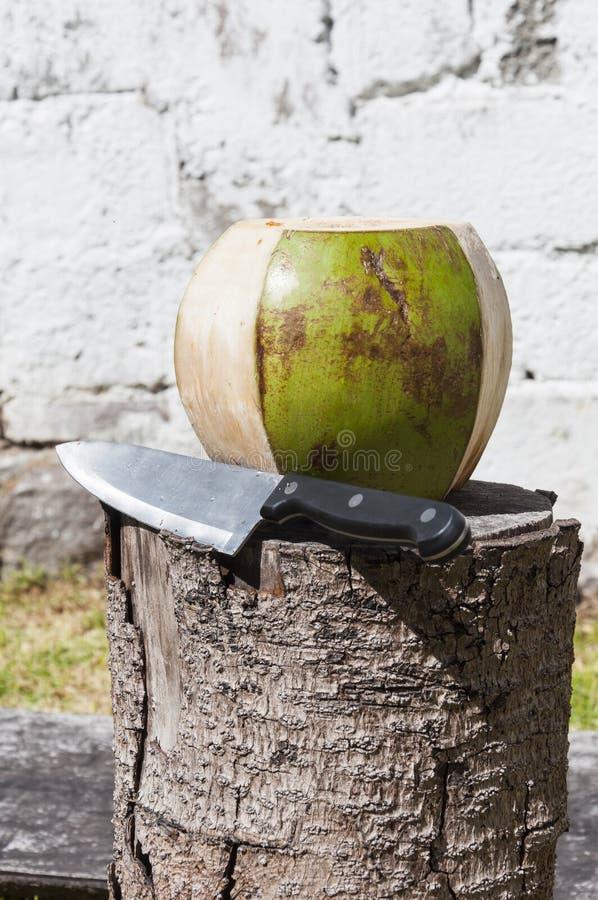 Schale einer reifen Kokosnuss mit einem Messer lizenzfreie stockbilder
