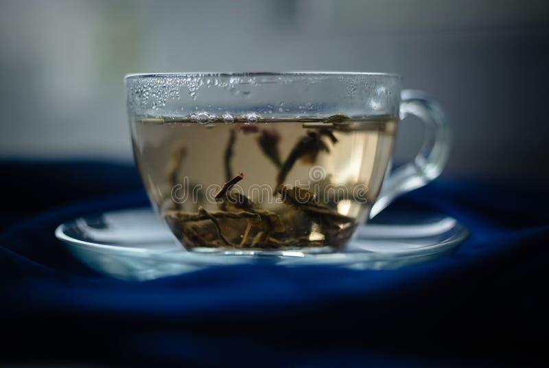 Schale grüner Tee auf dem blauen Hintergrund stockfoto