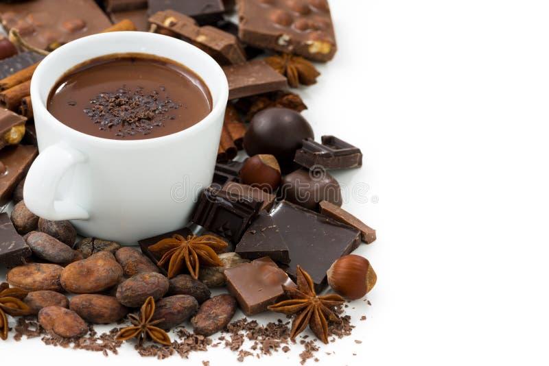 Schale heiße Schokolade und Bestandteile, lokalisiert auf Weiß lizenzfreie stockfotos