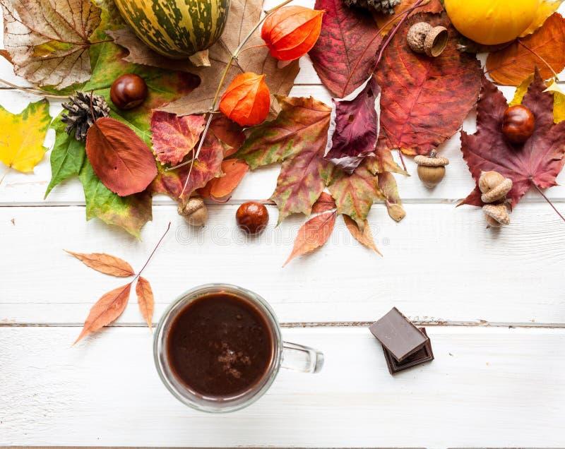 Schale heiße Schokolade und Herbstlaub stockfotografie