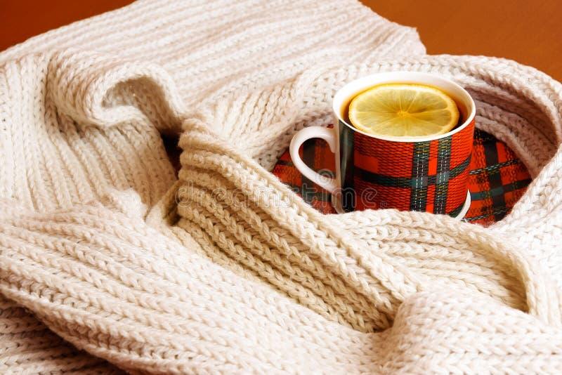 Schale heißer Tee mit Zitrone und Schal stockfotografie