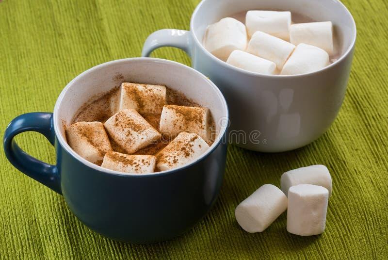 Schale Kakao mit marshmellow und Zimt lizenzfreie stockfotos