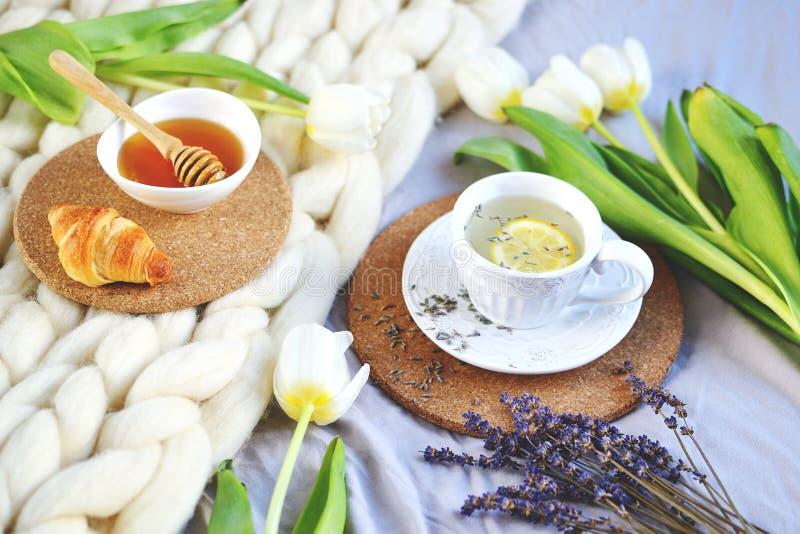 Schale mit Lavendeltee, Zitrusfrucht und Honig, Hörnchen, weiße riesige Knitpastelldecke lizenzfreie stockfotografie